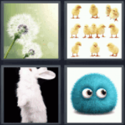 4-pics-1-word-fluff