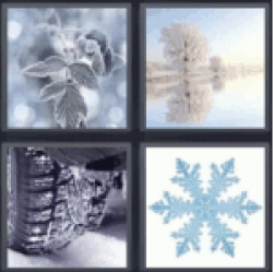 4 Pics 1 Word Snow on leaf