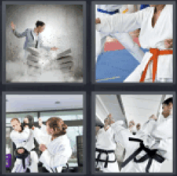 4-pics-1-word-karate