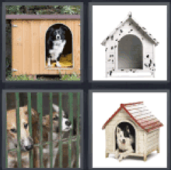 4-pics-1-word-kennel