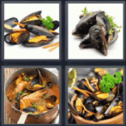 4-pics-1-word-mussels