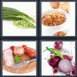 4-pics-1-word-onion