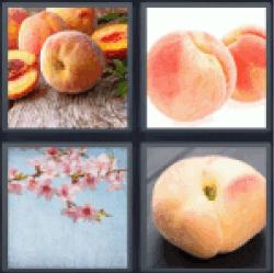 4-pics-1-word-peach