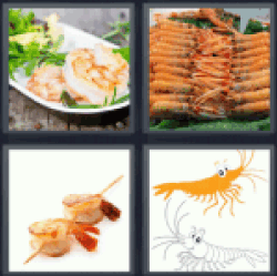 4-pics-1-word-prawn