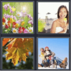 4 pics 1 word spring flowers