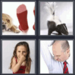 4 pics 1 word smell