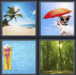 4 pics 1 word beach with palm tree