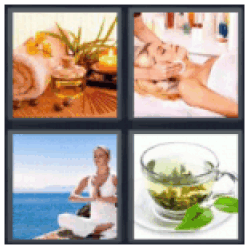 4-pics-1-word-wellness