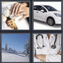 4 pics 1 word white flowers