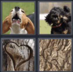 4 pics 1 word dog barking