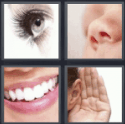 4 pics 1 word eye