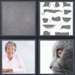 4 Pics 1 Word Old lady
