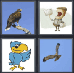 4 Pics 1 Word big bird flying