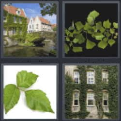 4 Pics 1 Word mansion