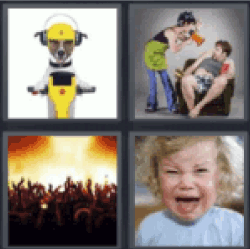 4 pics 1 word dog on motorcycle