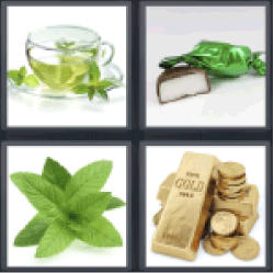 4 Pics 1 Word green leaves