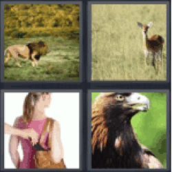 4 Pics 1 Word stealing from a Womans Bag