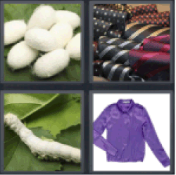 4 Pics 1 Word butterfly cocoon