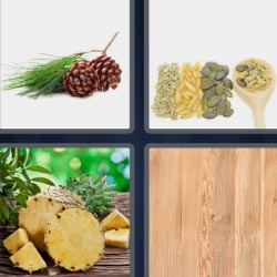 Four Pics One Word pineapple, spoon...