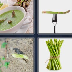 4 pics 1 word green soup